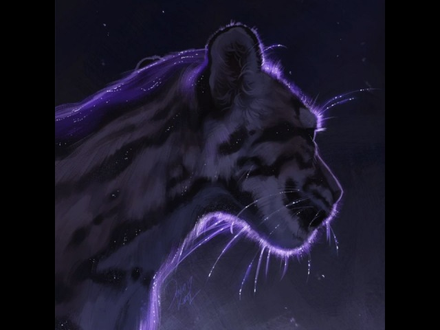"Art of Devin Elle Kurtz on Instagram ""Process video of the starry clouded leopard! Im off snowboarding at Big Bear (with 2 shibas and a corgi!) K..."