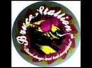 Drugs = Bad (Squire of Gothos Remix) - Bruce Stallion
