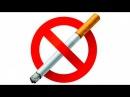 Эксперимент с сигаретами Что будет если выкурить 300 сигарет