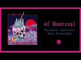 of Montreal - Paranoiac IntervalsBody Dysmorphia OFFICIAL AUDIO