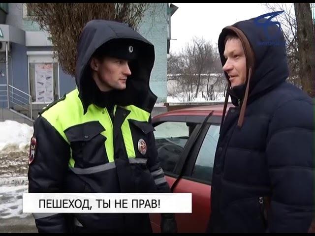 Почти пятьсот человек оштрафовали в Белгороде с начала года за переход дороги в неположенном месте