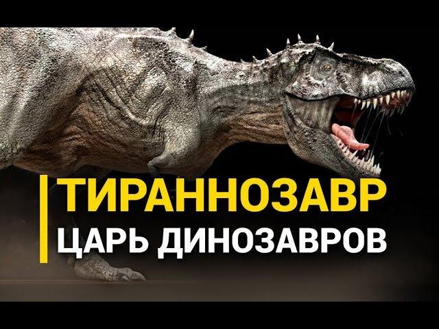 Тираннозавр Царь динозавров