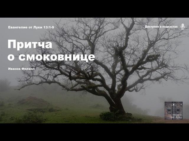 Евангелие от Луки – 30 – Притча о смоковнице (Филипп Иванов)