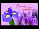 Все цветы сегодня для тебя...