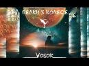 VOSOK - Белки в колесе