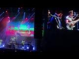Cage the Elephant &amp Weezer Live!