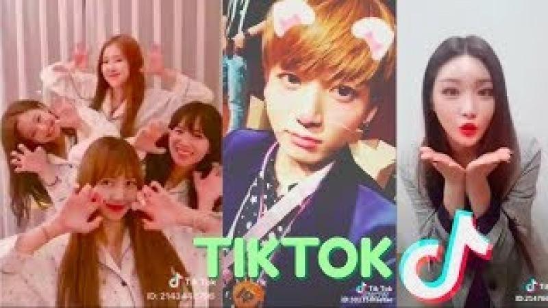 KPOP IDOLS Tik Tok 틱톡 (BTS, BLACKPINK, IKON)