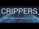 CRIPPERS 150% ЗА 24 ЧАСА Честный админ Честная работа