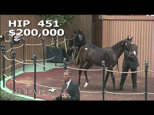 2015 November Breeding Stock Sale: Hip 451 - Bay Filly (War Front - Take Charge Lady)