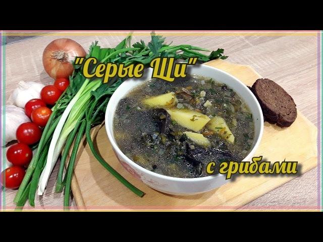 Серые Щи с грибами | Вкусный рецепт Постного супа | Щи из зелёной квашеной Капуст ...