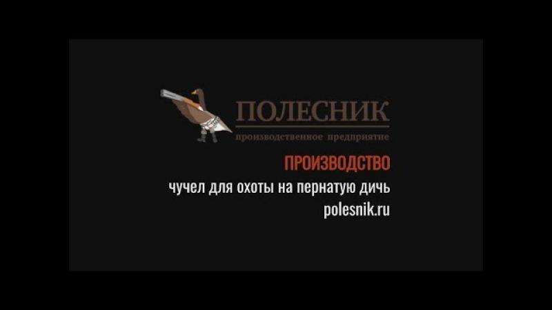 Сидоров Юрий Иванович Фанат Гусятник о чучелах ПОЛЕСНИК
