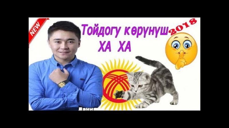 Кыргызча Роликтер15-Тойдогу Көрүнүш💥Мышыктын Тою👰✅