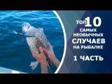 ТОП 10 необычных случаев на рыбалке. Вот это рыбалка! Ты не поверишь!