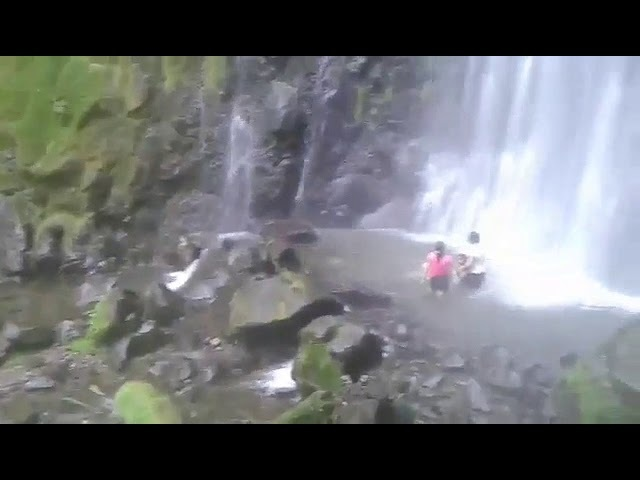Con mis perros en la catarata With my dogs at the waterfall Costa Rica NIdia Arce