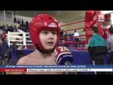 «Открытый Ринг» январь 2018, «КРЫМ 24», кикбоксинг, г.Симферополь
