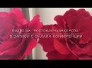Гигантская роза из фоамирана. Цветы-гиганты.