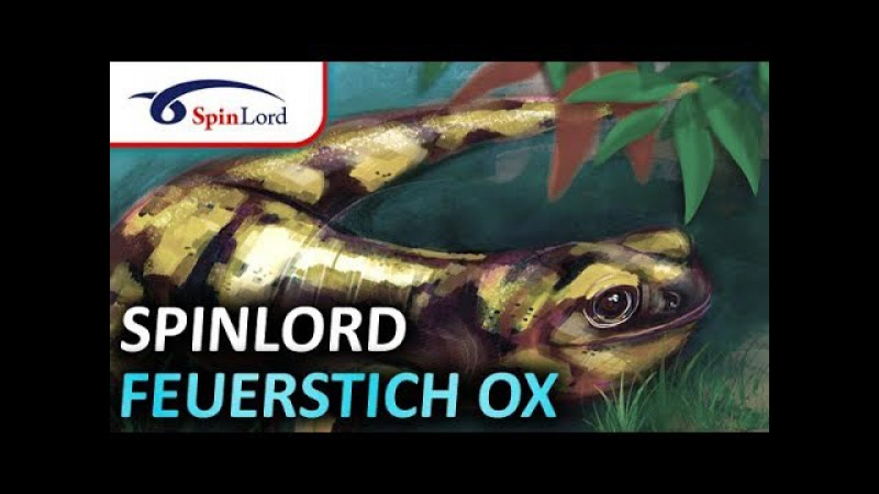 SPINLORD Feuerstich OX in defence and attack on different blades