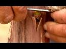 تطعيم تركيب العنب بطريقة البرعم خطوة خطوة