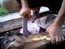 Тестирование ножа из булатной стали