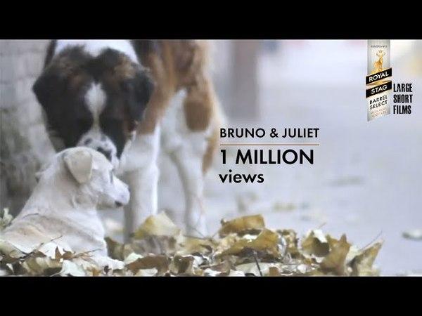 Bruno Juliet | Imtiaz Ali | Royal Stag Barrel Select Large Short Films