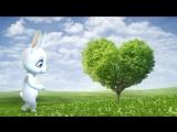 самый хороший клип зайка поёт песню для моего любимого самого самого любимого Это песенка поёт зайка для моего самого хорошего и