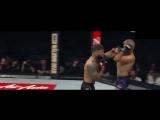 Tj Dillashaw Vs. Cody Garbrandt - UFC 217 - Fight Highlights