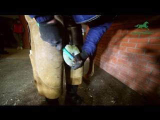 Безразмерные, безопасные, полиуретановые подковы HorseMaster.ru 180×180×14 (инструкция)