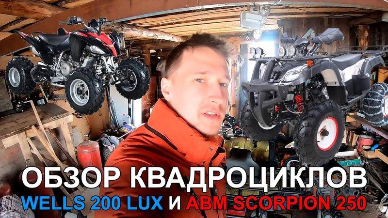 Обзор и тест-драйв квадроциклов Wels Thunder 200 Lux и ABM Scorpion 250