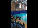 Первенство Самарской области по смешанному боевому единоборству ММА, 23 февраля 2018 г. ФОКОктан