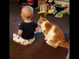 Дети и коты - лучшие друзья!