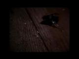 Velvet Acid Christ - Hallucinagene
