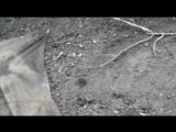 Укропы рассматривают останки своего передового отряда возле исполкома Дзержинска (22 июля 20.mp4