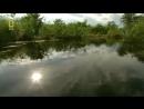 Мир животных. Дикая природа Амазонки. Документальный фильм National Geographic