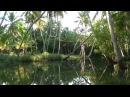 Индия. Керала. Backwaters: Путешествие в параллельный мир / Backwaters: trip to parallel world