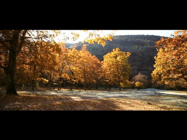 Золотой Кавказ: Архыз