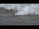 Спокойная музыка для отдыха. Шум морских волн