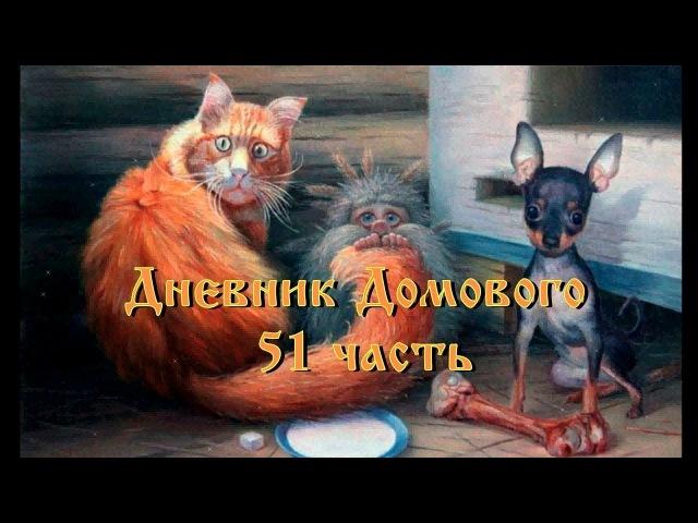Дневник Домового 51 часть (продолжение)