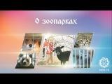 О зоопарках
