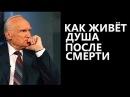 Алексей Осипов Как живёт душа после смерти 10 05 2017