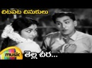 Chitapata Chinukulu Songs | Tella Cheera Full Song | Antasthulu Telugu Movie | ANR | Krishna Kumari