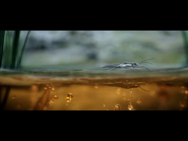 Mercedes-Benz - Stronger Than Time (Launch Film)