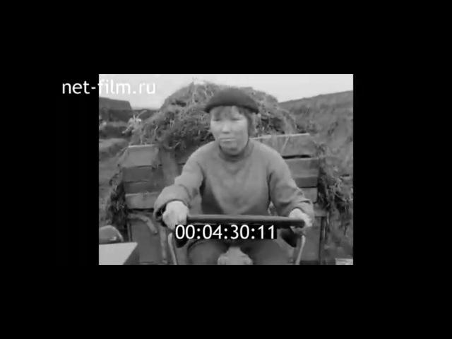 1970г. Колхоз имени Мичурина. механизатор Фомаида Корнилова. Марий Эл