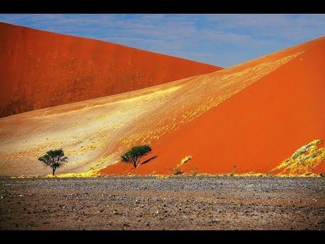 Все пустыни рукотворные Возраст им 300 лет