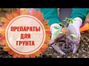 Чем обрабатывать грунт для рассады? 🌱 Марганцовка, био препараты, пропаривание 🌱 Советы эксперта