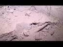Teröristlerin 300 Metrelik Tüneli içinde Herşey Var Afrin Zeytin Dalı YouTube