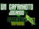 GAFANHOTO DO K-RALHO !