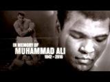 UFC Pays Tribute to Muhammad Ali ufc pays tribute to muhammad ali