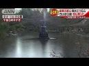 ブルッ・・・厳寒の都心 日比谷公園の池もカッチカチ(18/01/12)