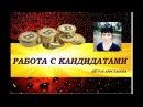 РАБОТА С КАНДИДАТАТАМИ ELYSIUM CRYPTOINVEST АЙГУЛЬ АРИСТАНОВА