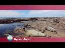 Орел и решка » Видео » Буэнос-Айрес. Аргентина